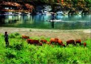 五一黎坪国家森林公园、汉中休闲自驾三日游